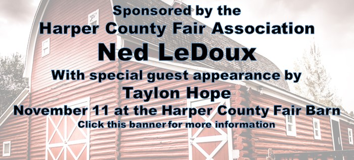 Ned LeDoux in concert